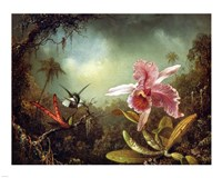 Orchid with Two Hummingbirds 1871 Fine-Art Print