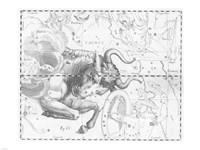 Taurus by Johannes Hevelius Fine-Art Print