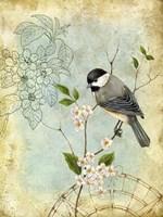Songbird Sketchbook II Framed Print