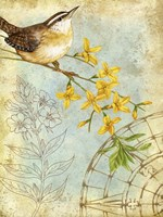 Songbird Sketchbook I Fine-Art Print