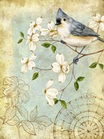 Songbird Sketchbook IV Fine-Art Print