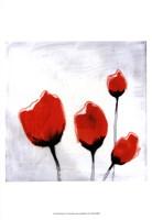 Red Drops V Fine-Art Print