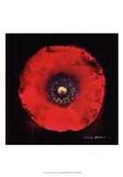 Vibrant Flower VII Fine-Art Print