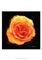 Vibrant Flower II Fine-Art Print