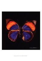 Techno Butterfly III Fine-Art Print