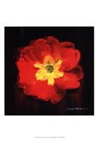 Vibrant Flower IX Fine-Art Print