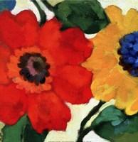 Anemone Garden II Fine-Art Print