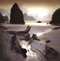 She Sleeps In The Sand Fine-Art Print