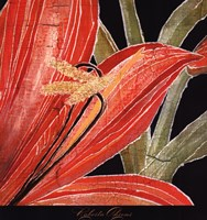Red Amaryllis With Stem Fine-Art Print