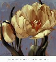 Lemon Tulips 2 Fine-Art Print