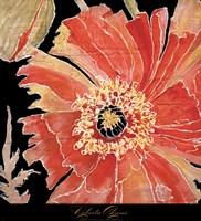 Oreintal Poppy Fine-Art Print
