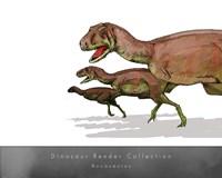 Aucasaurus Fine-Art Print
