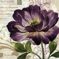 Study in Purple II -mini Fine-Art Print