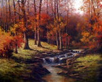 Bubbling Brook Fine-Art Print