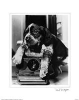 Polaroid Fine-Art Print