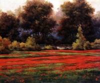 Autumn Poppies II Fine-Art Print