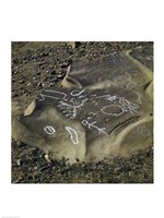 Aboriginal Rock Engraving So. Kolan East Queensland Australia Fine-Art Print
