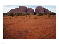 Rock formations on a landscape, Olgas, Uluru-Kata Tjuta National Park, Northern Territory, Australia Closeup Fine-Art Print