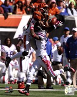 A.J. Green 2011 Catch Fine-Art Print