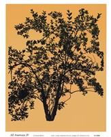 All American  IV Fine-Art Print
