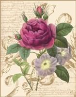 Bloomsbury II Fine-Art Print