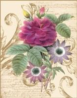 Bloomsbury I Fine-Art Print