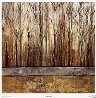 Telluride I Fine-Art Print