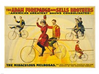 The Miraculous Melrosas Fine-Art Print