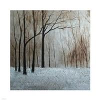 Forest Landscape Fine-Art Print
