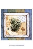 Sea Treasures VI Fine-Art Print