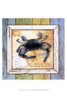 Sea Treasures VII Fine-Art Print
