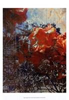 Tangled II Fine-Art Print