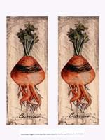 Fresco Veggies VI Fine-Art Print