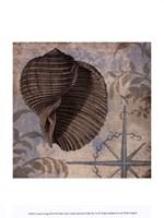 Coastal Cottage III Fine-Art Print