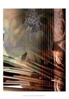 Relic Fan I Fine-Art Print