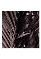 Bamboo Study I Fine-Art Print