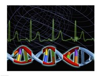 Close-up of the human DNA structure Fine-Art Print