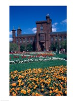 Formal garden in front of a museum, Smithsonian Institution, Washington DC, USA Fine-Art Print