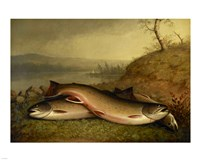 Brooklyn Museum - Trout - Walter M. Brackett Fine-Art Print