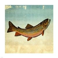Brown Trout I Fine-Art Print