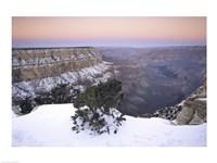 High angle view of a tree on a snow covered mountain, South Rim, Grand Canyon National Park, Arizona, USA Fine-Art Print