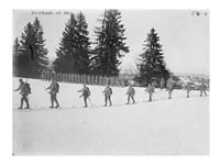 Austrians on Skis Fine-Art Print