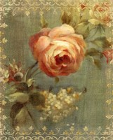 Rose on Sage Fine-Art Print