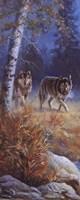 Moonlit Wolves Fine-Art Print