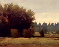 Evening Near Eugene Fine-Art Print