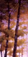 Purple Wood I Fine-Art Print