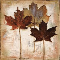 Nautral Leaves III Fine-Art Print