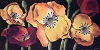 Dazzlin poppies II Fine-Art Print