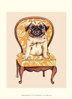 Pampered Pet I Fine-Art Print