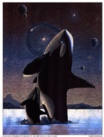 Orcas in the Sky Fine-Art Print